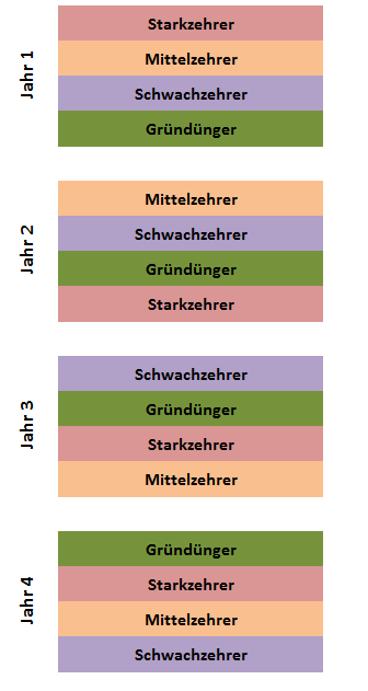 Grafik: der 4-jährige Fruchtwechsel
